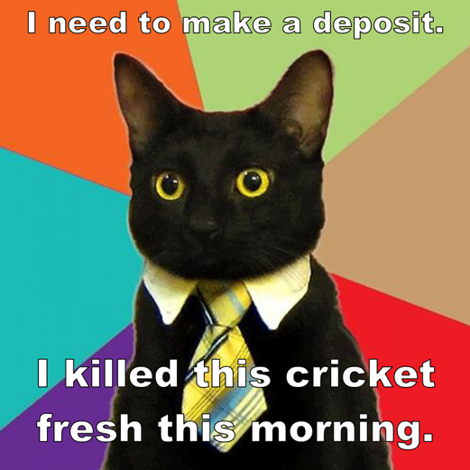 "Business Cat meme with caption ""I need to make a deposit. I killed this cricket fresh this morning."""
